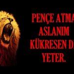 Resimli Galatasaray Sözleri ve Mesajları
