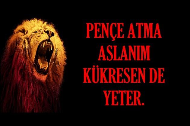 Resimli Galatasaray Kartları ve Sözleri