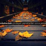 Sonbahar Sözleri. En Anlamlı Sonbahar ile ilgili Sözler